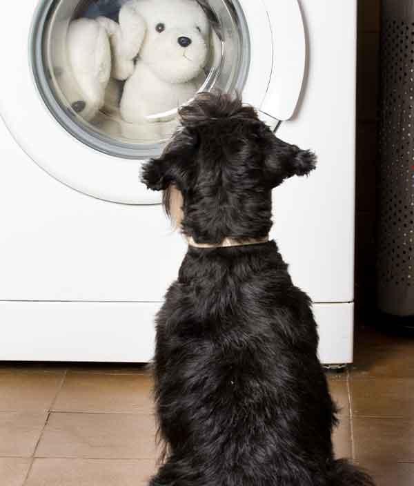 Plumbing a washing machine
